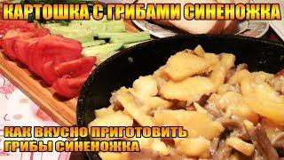 Картошка с грибами Синеножка или Рядовка,как вкусно пожарить картошечку с грибочками