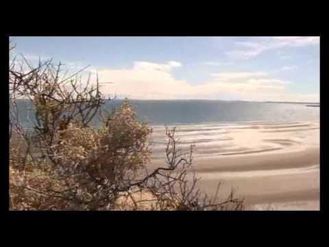 NATURALEZA EXTREMA - Península Valdés