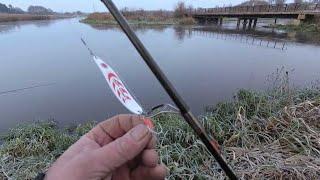 А мы тут со спиннингами Экологическое состояние реки Свислочь на момент 02 11 19