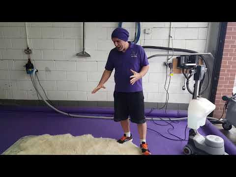 Sheepskin Rug Cleaning