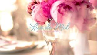 видео свадебная полиграфия