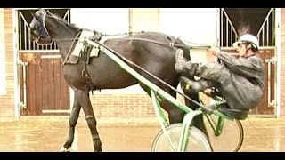Lad-jockey, lad-driver