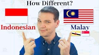 How Different Are Indonesian and Malay!
