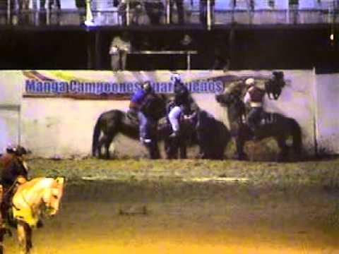 valle de la pascua 2010 campeonato a