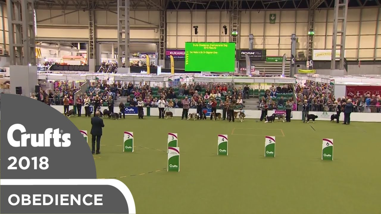 Obedience - Dog Championship - Awards Parade   Crufts 2018