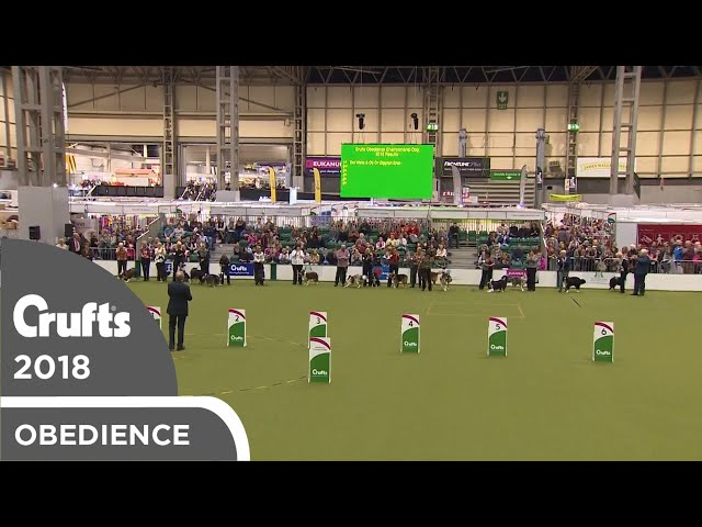 Obedience - Dog Championship - Awards Parade | Crufts 2018
