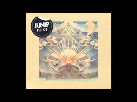 Junip - Don't Let It Pass mp3