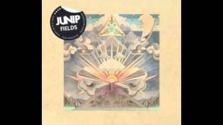 Watch Junip Dont Let It Pass video