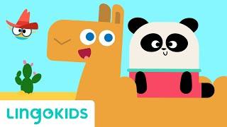 Alice The Camel - Nursery Rhymes & Kids Songs | Lingokids - School Readiness in English