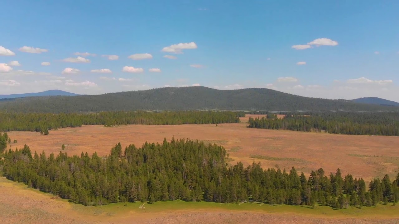 9.86 Acres! Flat Open Land!