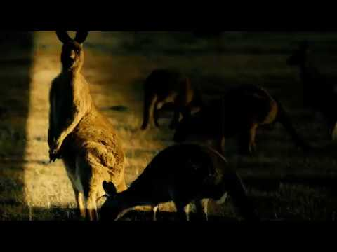 Broken Hope - Outback Incest Clan