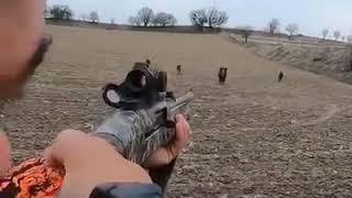 실제) 멧돼지 사냥 영상 1초만 늦게 쐈으면.. Rea…