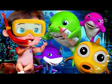 Baby Shark , Happy Birthday Song , Wheels on the Bus ,Johny Johny Yes Papa +More (hd)
