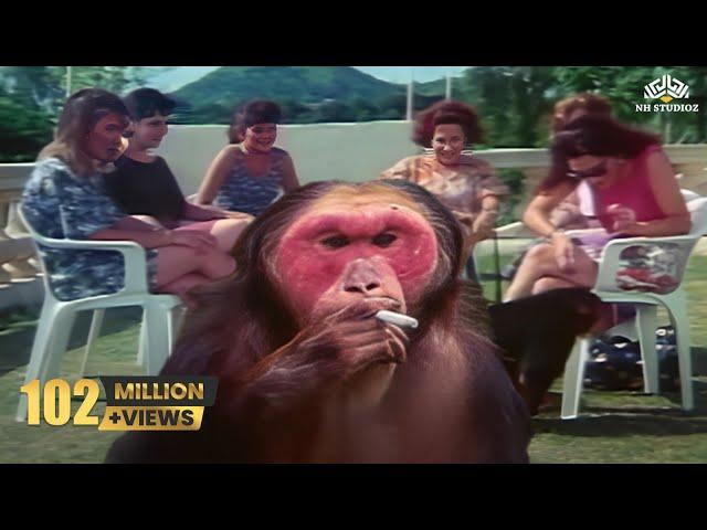 raja rani badsha movie