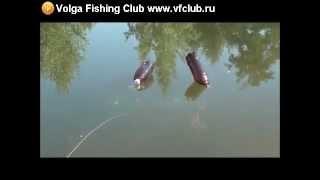 Ловля рыбы летом на пластиковые бутылки