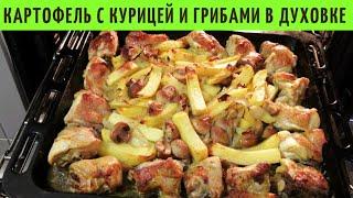 Картошка с курицей и грибами Картошка в духовке ВКУСНОДЕЛ