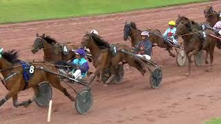 Vidéo de la course PMU PRIX DU BALLON D'ALSACE