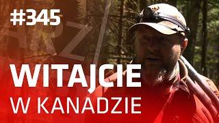 Darz Bór odc. 345 - Witajcie w Kanadzie!