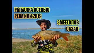 Рыбалка осенью на реке Или рн Кунаевского моста Аралтобе РОЗЫГРЫШ МИНИ ПЕЧКИ
