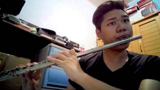 Rewrite The Stars - The Greatest Showman | Flute Cover