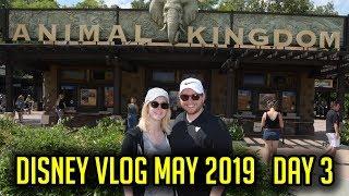 Day 3! Animal Kingdom, Pandora, Yak & Yeti Lunch! - Disney World Vlog May 2019