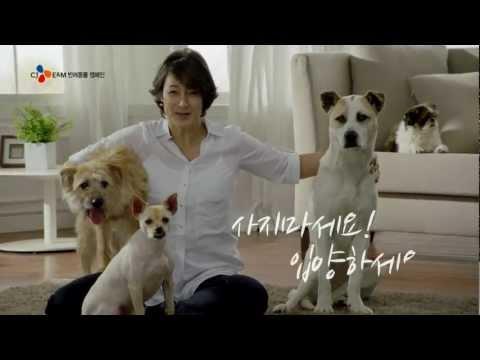 Kolleen Park, CJ E&M Animal Companion Campaign