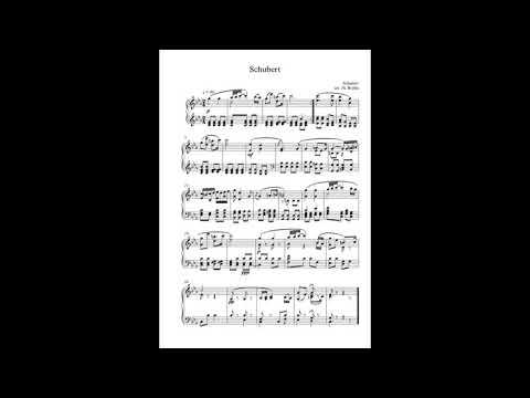 Schubert Arr By M. Brylka