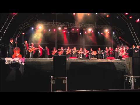 TUALLE  - Brincadeiras de Amor - XXX Semana Académica do Algarve (2015) thumbnail