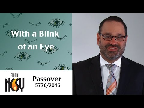 Passover 5776 - With a Blink of an Eye - Rabbi Yehoshua Marchuck, Director of NCSY Alumni