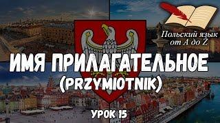 Польский язык от А ДО Ż - Имя прилагательное (15 урок)