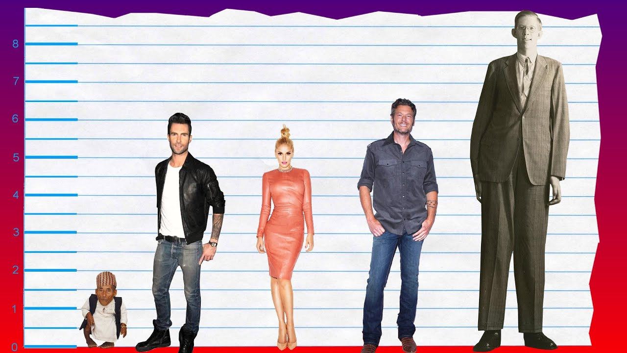 How Tall Is Adam Levine of Maroon 5? – Height Comparison!