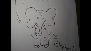 How to Draw an Elephant (Easy)  / 11 den FİL Çizimi