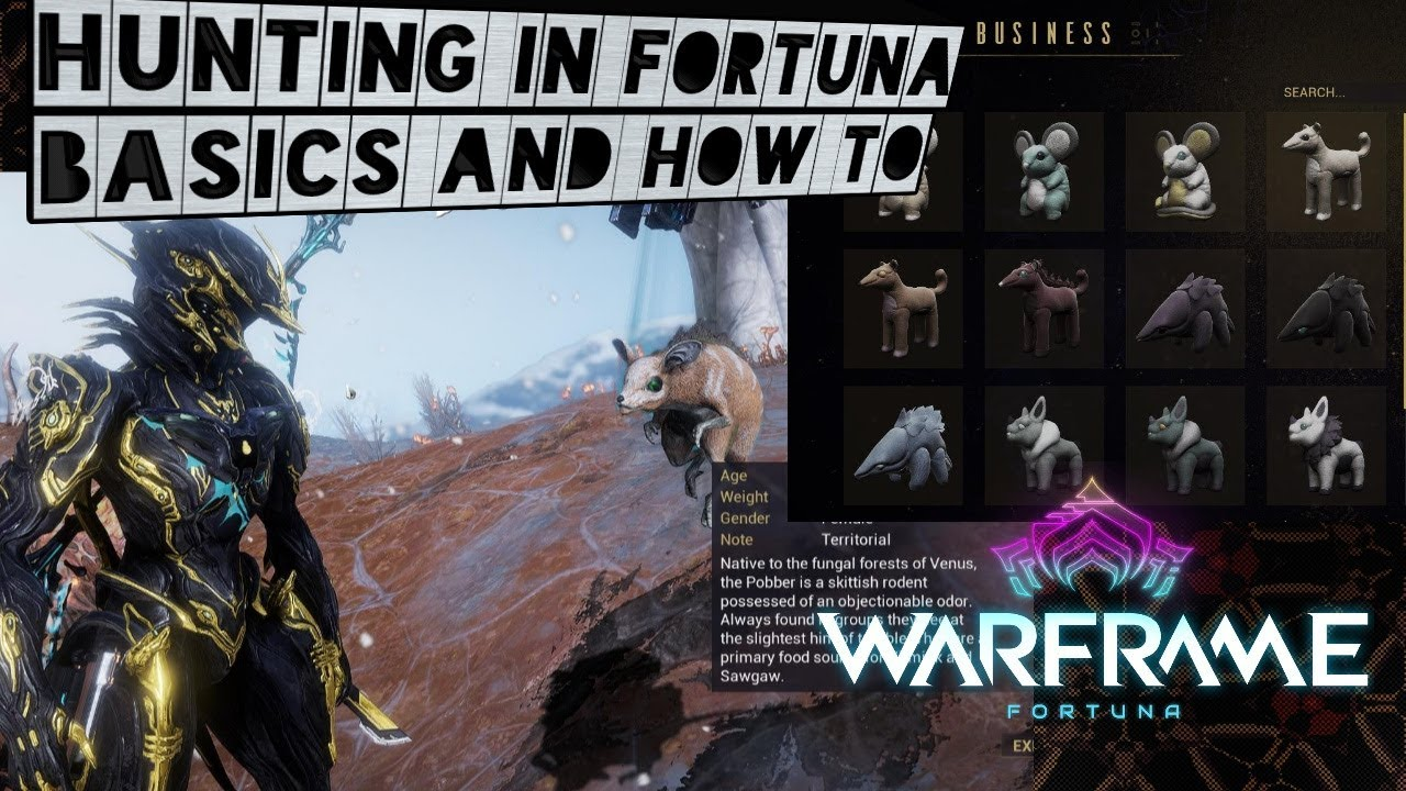 Warframe How To Hunt In Fortuna YouTube