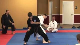 Shuri-Ryu Karate Seminar 2007 Troy J. Price Action Clips