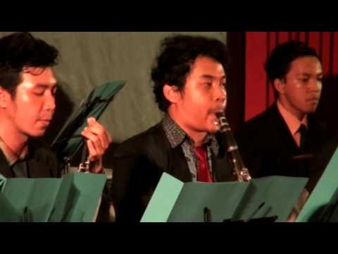 Medical Chamber Orchestra - Classical Night 2015