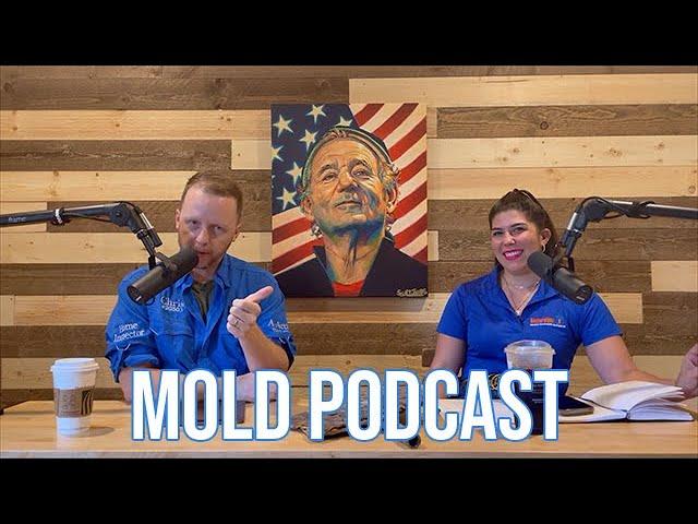 Mold Podcast - Home Inspection Whisperer