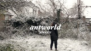 new year. | antworld