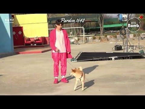 [VIETSUB][BANGTAN BOMB] There's a Dog on the Set with BTS! - BTS (방탄소년단)