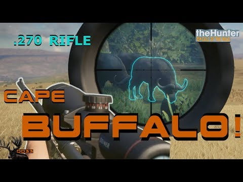 Hunting CAPE BUFFALO with the 270 WARDEN!! Call of the WILD THEHUNTER 2018
