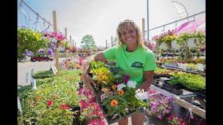 Get that veggie or flower garden started today!