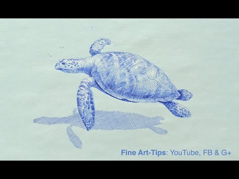 How to Draw a Sea Turtle With a Fountain Pen - Blue Ink