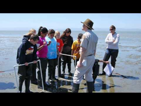 KQED QUEST Web Extra: Exploring the Bay Lab