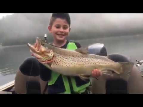 Lake Burton Record Brown Trout
