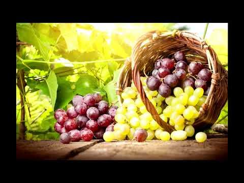 🔴🔴Хотим виноград вкусный, крупный, беспроблемный и неукрывной.