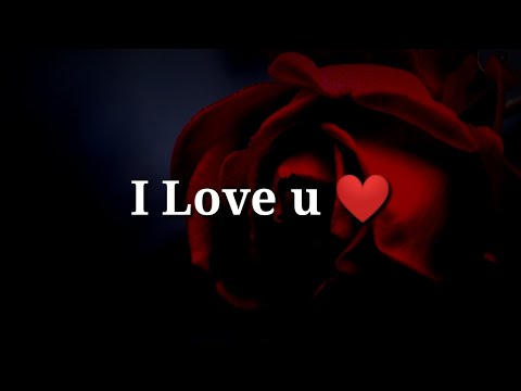 I Love U ❤ Very Romantic Shayari ❤ Valentine Day Special  ❤Romantic Hindi Shayari