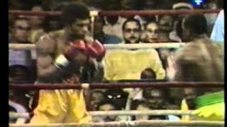 Mike McCallum vs  Julian Jackson (Good quality)