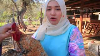 Jazirah Islam   Alpujarras Last Fort of Islam in Spain part3