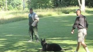 Mountaineer Schutzhund Club, June 19 21, 2009