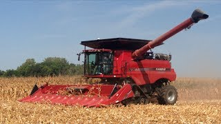 Corn Harvest 2015 Webster County Iowa
