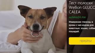 Тест-полоски Wellion GLUCO CALEA для животных